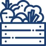 Vegetable Garden icon